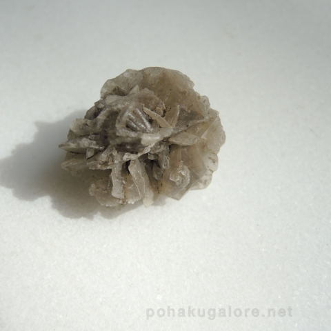 Selenite Rose or Hawaiian Rose or Desert Rose from Hawaii -pohakuagalore