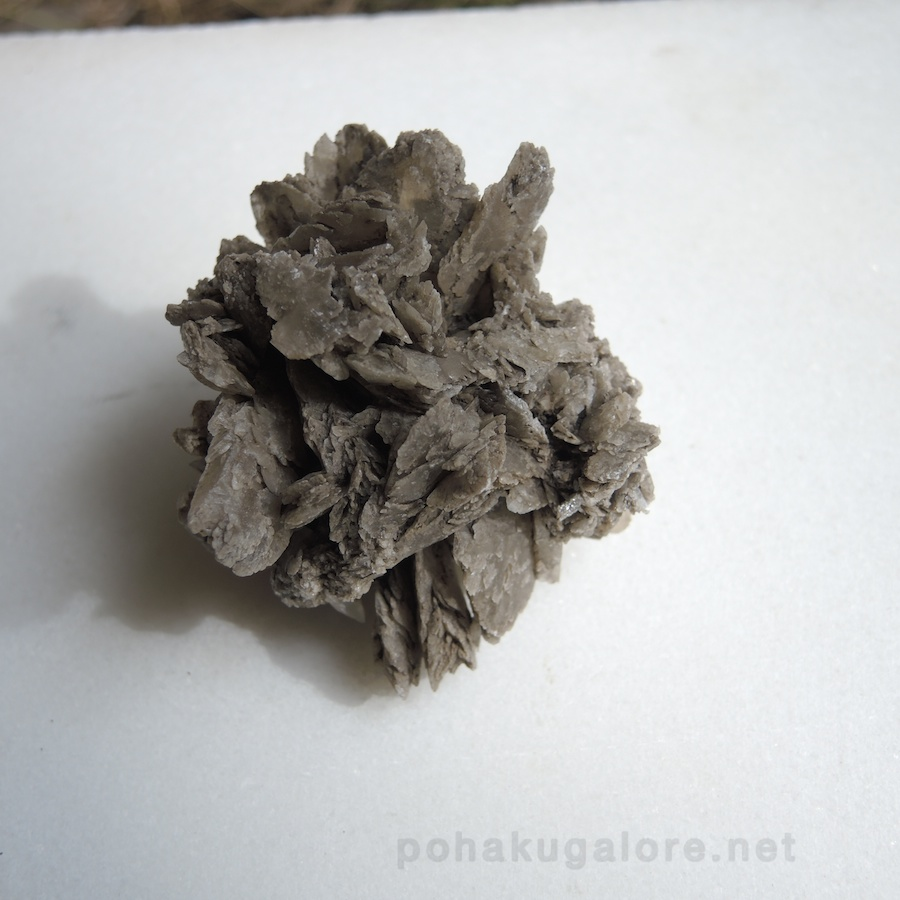 Selenite Rose or Hawaiian Rose or Desert Rose from Hawaii -pohakugalore
